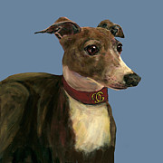 Greyhound Dog Framed Prints - Italian Greyhound Framed Print by Dale Moses