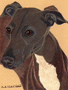 Greyhound Prints - Italian Greyhound Vignette Print by Anita Putman