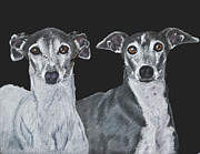 Whippet Painting Prints - Italian Greyhounds Portrait Over Black Print by Kate Sumners