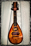 Instrument Art - Italian Mandolin by Bill Cannon