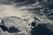 Black And White Nature Landscapes Posters - Its a Powerful Thing Poster by Laurie Search