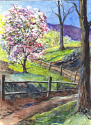 Split Rail Fence Drawings Prints - Its Appleblossom Time Print by Carol Wisniewski