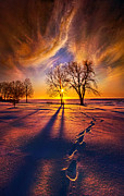 Phil Koch - It