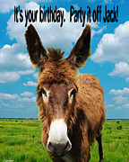 Donkey Digital Art Metal Prints - Its Your birthday Jack Metal Print by Lizi Beard-Ward