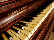 Metal Sheet Prints - Ivers Ponds Piano Print by Todd and candice Dailey