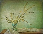 Cherry Blossoms Metal Prints - Ivory and Turquoise Metal Print by Priska Wettstein