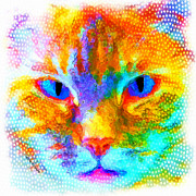 Feline Mixed Media Metal Prints - Izzy Metal Print by Moon Stumpp