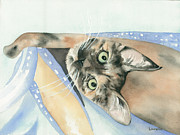 Kimberly Lavelle - Izzy the Kitty