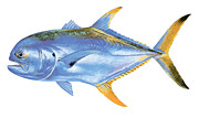 Animals Tapestries Textiles Originals - Jack Crevalle by Carey Chen