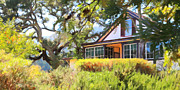 Jack London Countryside Cottage And Garden 5d24570 Long Print by Wingsdomain Art and Photography