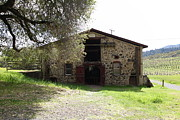 Vineyards Photos - Jack London Sherry Barn 5D22069 by Wingsdomain Art and Photography