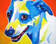Alicia Vannoy Call Framed Prints - Jack Russell - Skippy Framed Print by Alicia VanNoy Call