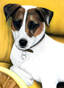 Cute Dogs Pastels - Jack Russell by Rebelwolf