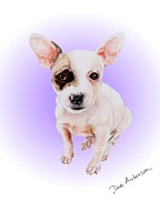 Animal Shelter Drawings - Jack Sparrow - a former shelter sweetie by Dave Anderson