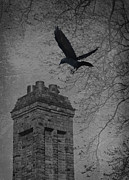 Brickwork Prints - Jackdaw Flying To Chimney Print by Christopher and Amanda Elwell