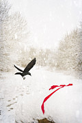 Ribbon Framed Prints - Jackdaw In Snow Framed Print by Christopher and Amanda Elwell