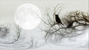 Tomas Images - Jackdaws In The Moonlight