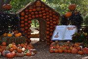 Fall Photos Originals - Jacks Pumpkin House by Ruth  Housley
