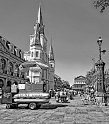Lucky Dogs Framed Prints - Jackson Square monochrome Framed Print by Steve Harrington