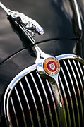 Front End Prints - Jaguar 3 4 litre Classic Car Print by Tim Gainey