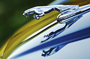 Yellow Photographs Prints - Jaguar Car Hood Ornament Print by Jill Reger