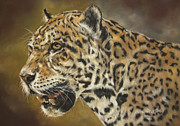Whiskers Pastels Metal Prints - Jaguar Metal Print by Christina Frenken