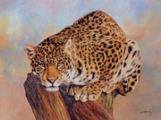 Oil Cat Paintings - Jaguar by David Stribbling
