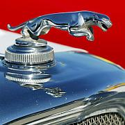 Jaguar Metal Prints - Jaguar Hood Ornament 2 Metal Print by Jill Reger