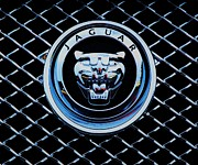 Owner Prints - Jaguar Logo And Grille Print by Marcus Dagan