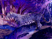 Jaguar Digital Art - Jaguar Night by Randall Weidner