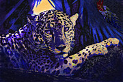 Jaguar Digital Art - Jaguar- The Spirit Of Belize by Jane Schnetlage