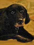 Lay Digital Art - Jaime A Black Lab by Maureen Tillman