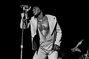 Music Legend Framed Prints - James Brown Legend Framed Print by Sanely Great