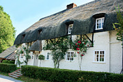 Charming Cottage Prints - Janes Cottage High Street Nether Wallop Print by Terri  Waters