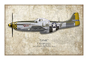 Aviation Artwork Metal Prints - Janie P-51D Mustang - Map Background Metal Print by Craig Tinder