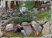 Prescott Mixed Media - Janies Rock garden 1 by Craig Nelson