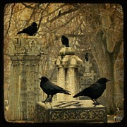 Ravens In Graveyard Framed Prints - January Framed Print by Gothicolors And Crows