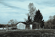 Shed Acrylic Prints - January Sadness Acrylic Print by Jutta Maria Pusl