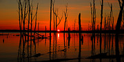 Manasquan Reservoir Posters - January Sunrise Poster by Raymond Salani III