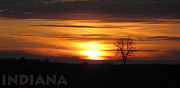 Rural Indiana Posters - January Sunset with Indiana Poster by Dan McCafferty