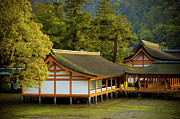 Shinto Prints - Japan Itsukushima Print by Sebastian Musial