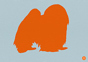 Japanese Dog Prints - Japanese Chin Orange Print by Irina  March