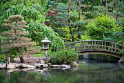 Bridge Photos - Japanese Garden by Adam Romanowicz