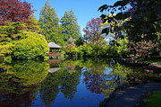 Marilyn Wilson - Japanese Garden Pond -...