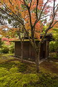 Japanese Garden Photos - Japanese Garden Teahouse by Mike Reid