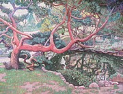 Jonathan Wall - Japanese Garden Tree