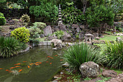 Hawaii State Fish Posters - Japanese Garden with Koi Pond Poster by John Orsbun