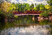 Japanese Gardens Bridge Print by Debra and Dave Vanderlaan