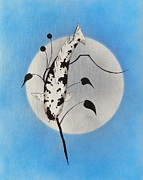 Sakana Framed Prints - Japanese koi utsuri Mono Ikebana blue Framed Print by Gordon Lavender