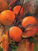 Indiana Flowers Mixed Media - Japanese Persimmon by John Christopher Bradley
